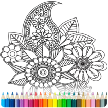 Coloring Book for Adults  8.3.2 APK MOD
