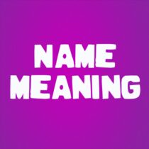My Name Meaning 7 APK MOD