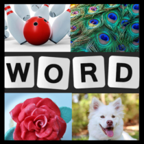 Word Picture IQ Word Brain Games Free for Adults  1.5.1 APK MOD